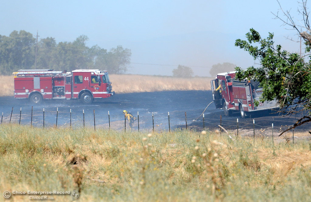 . Firefighters work on a grass fire near Hwy. 99 and Hwy. 149 intersection in Oroville, Calif. Thurs. June 22, 2017.  (Bill Husa -- Enterprise-Record)