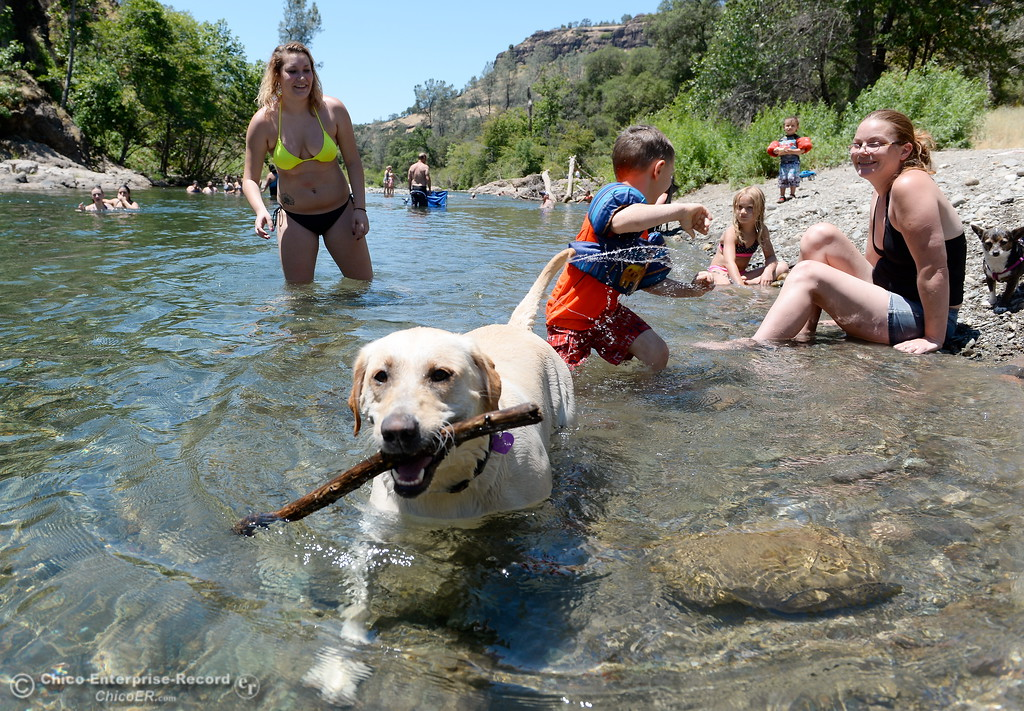 . A dog named Violet looks for someone to throw a stick while Devany Morrow of Paradise, left and Ann Garner of Chico cool off by Butte Creek as temps reach triple digits again today in Chico, Calif. Thurs. June 22, 2017.  (Bill Husa -- Enterprise-Record)