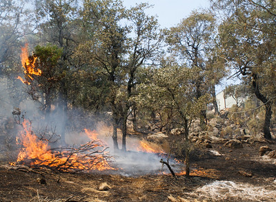 Flames burn close to a structure in the top right corner as Cal Fire Butte County and other agencies work to contain the Wall Fire Saturday July 8, 2017 in Oroville, California.  (Emily Bertolino -- Enterprise-Record)