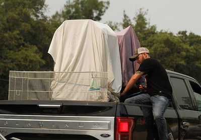 Travis McDavitt ties down his bird cages as he is forced to evacuated as threats of the Wall Fire become real Saturday July 8, 2017 along Forbestown Road in Oroville, California.  (Emily Bertolino -- Enterprise-Record)