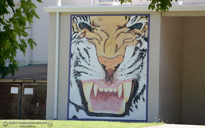 A mural is seen painted on an outside wall on the Oroville High School campus as Principal Cristi Tellachea talks about her excitement over the start of the school year during an interview at her office in Oroville, Calif. Wednesday, July 11, 2018.  (Bill Husa -- Enterprise-Record)