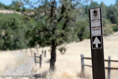 A sign is seen pointing the way toward the Monkey Face Loop Trail in Upper Bidwell Park Monday June 25, 2018. (Bill Husa -- Enterprise-Record)