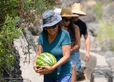 "Lenora Black Calf of Arizona carries a watermelon as she hikes near Bear Hole in Upper Bidwell Park Thursday, July 12, 2018. ""This melon is making the hike interesting"" said Black Calf. (Bill Husa -- Enterprise-Record)"