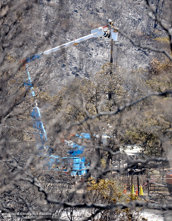. A PG&E Lineman is seen through the trees working to establish power back to a devestated neighborhood following the Wall Fire near Oroville, Calif. Mon. July 10, 2017. (Bill Husa -- Enterprise-Record)