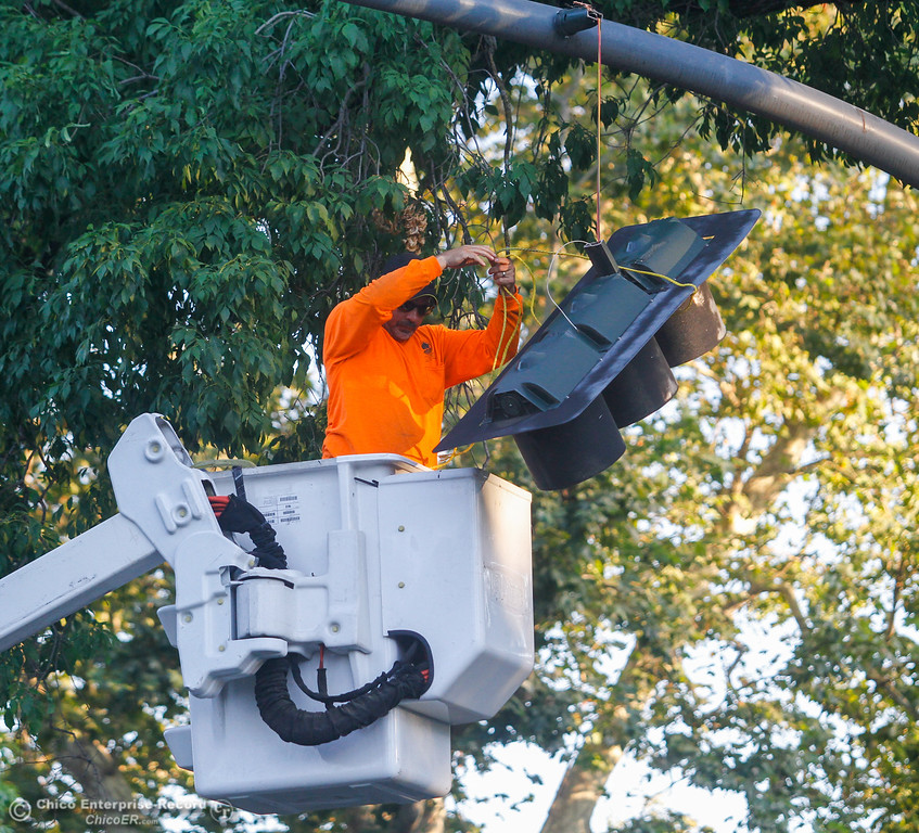 . An employee with City of Chico works to remove the street light that was knocked off it\'s pole when a big tree limb fell along Warner Street at West Sacramento Tuesday July 25, 2017 in Chico, California. (Emily Bertolino -- Enterprise-Record)