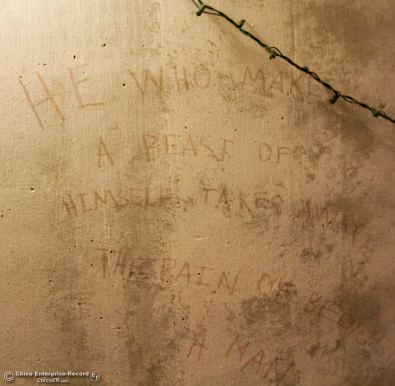 """. A quote, \""""He who makes a beast of himself takes away the pain of being a man,\"""" on 15 inch thick concrete walls of an 1960s era bomb shelter Thursday July 27, 2017 in Chico, California. (Emily Bertolino -- Enterprise-Record)"""
