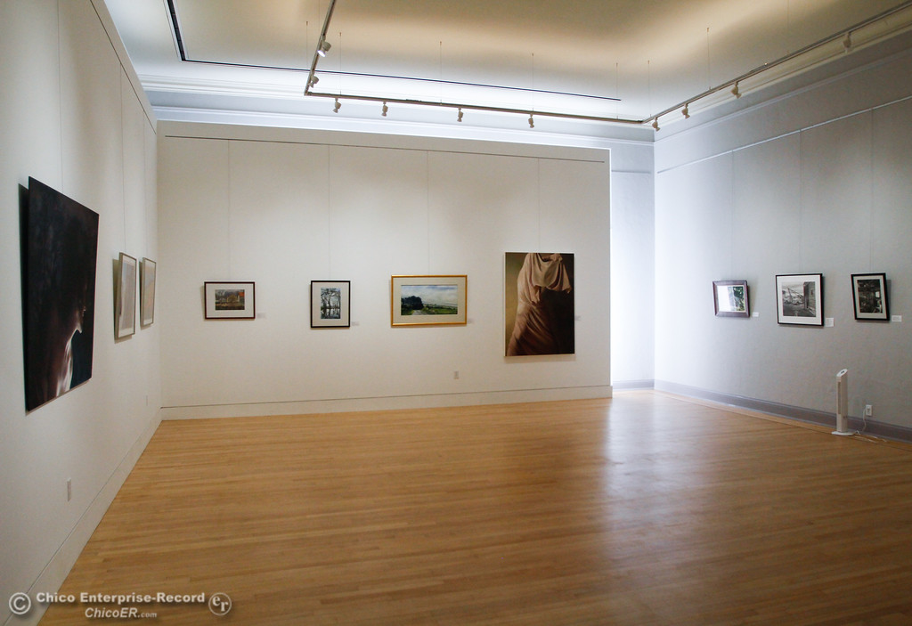 . Honoring Woman, displays art created by woman in one of the four current galleries at the new Museum of Northern California Art Wednesday July 26, 2017 in Chico, California. (Emily Bertolino -- Enterprise-Record)