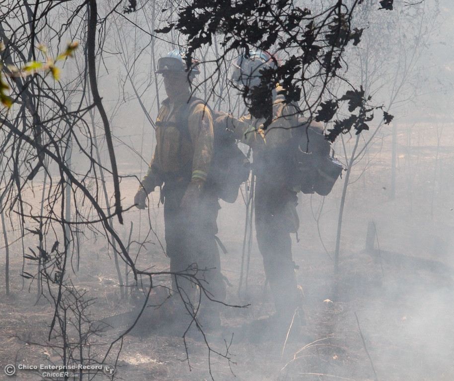. Firefighters work to contain a vegetation fire along Dudley Lane off of Buschmann Road July 25, 2017 in Paradise, California. The fire was quickly contained to approximately two acres. (Emily Bertolino -- Enterprise-Record)