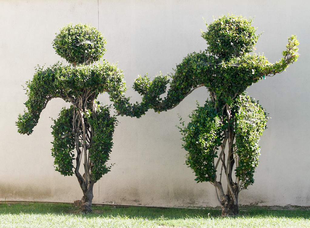 . A topiary couple basks in the sun Saturday August 26, 2017 at the Silver Dollar Fairgrounds in Chico, California. (Emily Bertolino -- Enterprise-Record)