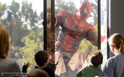 """James Troupe, """"Spiderman"""" has an audience as he cleans a window on the fourth floor at Enloe Medical Center Monday.   Window washers from A Touch of Glass bring smiles to faces of children and adults as they clean the windows on the fourth floor of Enloe Medical Center dressed as Superheroes Monday Sept. 19, 2016. The crew led by Chad Woodard dressed as Superman included James Troupe as Spiderman, Mark Clarno as Thor and Spencer Rogers as Batman said this was the first time they had dressed as Superheroes for work but enjoyed bringing smiles to faces at Enloe Monday morning. (Bill Husa -- Enterprise-Record)"""