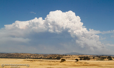 The Ponderosa Fire smoke plume seen from Neal Road Tuesday August 29, 2017 in Chico, California. (Emily Bertolino -- Enterprise-Record)
