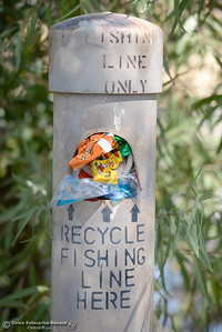 The fishing line only recycling tube must look enough like a garbage can to some folks at Horseshoe Lake in Upper Bidwell Park in Chico, Calif. Mon. Aug. 28, 2017.  (Bill Husa -- Enterprise-Record)