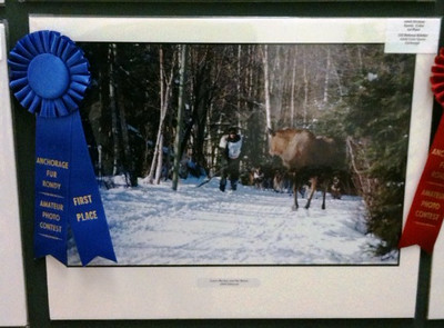 First Place in the Fur Rondy Photo Contest 2010