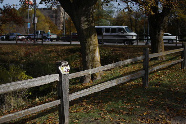 Record-Eagle/Keith King<br /> A mask is joined to a fence post Thursday, November 3, 2011 in Hannah Park in Traverse City.