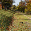 Record-Eagle/Keith King<br /> A squirrel jumps as it forages Thursday, November 3, 2011 in Hannah Park in Traverse City.