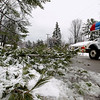 Record-Eagle/Keith King<br /> A tree limb lies along Beadle Street Wednesday, April 20, 2011 in Traverse City.