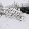 Record-Eagle/Keith King<br /> A fallen tree blocks a portion of East Fouch Road Saturday, March 3, 2012 in Elmwood Township.