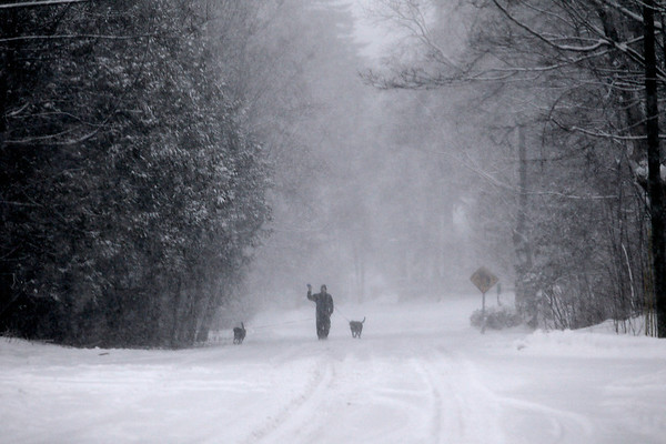Record-Eagle/Jan-Michael Stump<br /> Matt Krantz (cq) walks his dogs Ruby and Doug along a snow-covered Lincoln Street in Suttons Bay on a snowy Tuesday afternoon.