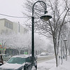 Record-Eagle/Keith King<br /> Snow accumulates along East Front Street Tuesday, January 17, 2012 in downtown Traverse City.