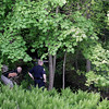 Record-Eagle/Keith King<br /> A black bear is searched for Sunday, May 29, 2011 in Traverse City.