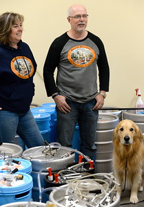 Alison and Steve Kay stand among the kegs as they talk about their British Bulldog Brewery during a tour of the facility in Chico, Calif Mon. April 17, 2017. The golden retriever is Hugo.  (Bill Husa -- Enterprise-Record)