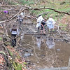 Submitted   Sixth-graders from Madison Middle School participate in a stream study at Holden Arboretum on April 28, 2016.