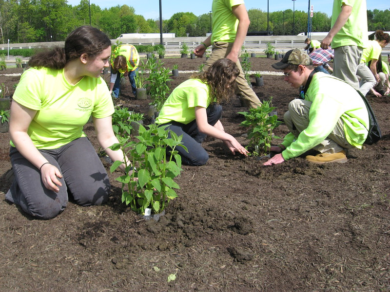 Richard Payerchin - The Morning Journal <br> From left, Lorain County JVS students Maggie Lieb, 17, of Avon, Brianna Rolfe, 17, of North Ridgeville, and Alex Gould, 18, of Avon Lake, help plant a Native Pollinator Plant Garden, the first of its kind along the Ohio Turnpike, at the Vermilion Valley service plaza, with 17 species of perennials native to Ohio and that will attract birds, butterflies and other wildlife. The students met with officials from Lorain County and the Ohio Turnpike and Infrastructure Commission on May 20, 2016, to create the garden.