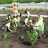Richard Payerchin - The Morning Journal <br> Lorain County JVS students work to plant a Native Pollinator Plant Garden, the first of its kind along the Ohio Turnpike, at the Vermilion Valley service plaza on May 20, 2016. The garden was planted with 17 species of perennials native to Ohio and that will attract birds, butterflies and other wildlife.
