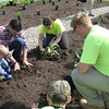 """Richard Payerchin - The Morning Journal <br> Porter Cole, 2, at left, helps his father, Ohio Turnpike and Infrastructure Commission Executive Director Randy Cole, and Lorain County JVS students plant the first Native Pollinator Plant Garden at the Vermilion Valley service plaza of the turnpike on May 20, 2016. The group planted 17 native species of plants that, when blooming, """"will display a sense of splendor and place that is uniquely Ohio,"""" according to plans."""