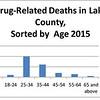 Drug deaths 6
