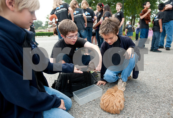 photo by Sarah A. Miller/Tyler Morning Telegraph  Fifth graders Ross Harris, 11, left, and Reid Williams, 10, center, play with a turtle and Guinea pig owned by Carson Harris, 11, pictured right, at St. Gregory Catholic school's annual pet blessing Thursday in Tyler. Father Anthony McLaughlin, rector of Cathedral of the Immaculate Conception in Tyler led the ceremony. Students and their family members brought pets ranging from cats and dogs to turtles and even horses.