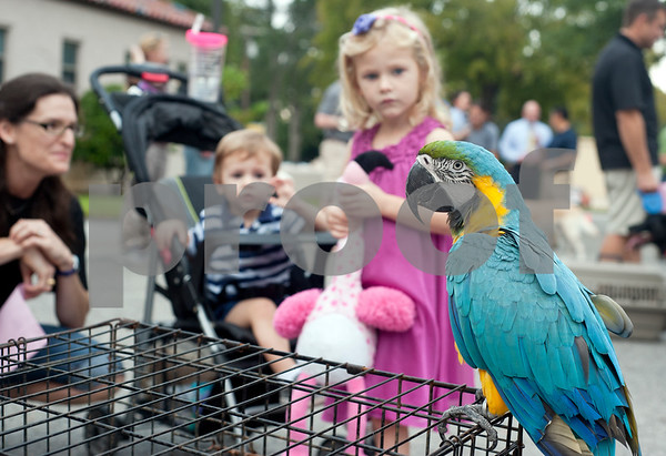 photo by Sarah A. Miller/Tyler Morning Telegraph  April Manfood and her children Peter, 1, and Gianna, 4, get an up close view of a parrot Thursday at St. Gregory Cathedral school's annual pet blessing. Father Anthony McLaughlin, rector of Cathedral of the Immaculate Conception in Tyler led the ceremony. Students and their family members brought pets ranging from cats and dogs to turtles and even horses.