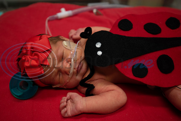 Infant Dorothy (no last name given) wears a ladybug costume at the Neonatal Intensive Care Unit (NICU) at Christus Trinity Mother Frances Hospital-Tyler on Wednesday, Oct. 30, 2019. NICU nurses provided free costumes for each child in the NICU for their first Halloween.  (Sarah A. Miller/Tyler Morning Telegraph)