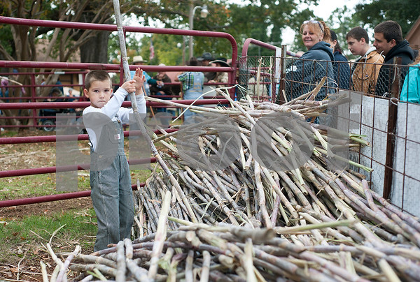 photo by Sarah A. Miller/Tyler Morning Telegraph  Jacob Dygert, 5, of Henderson organizes ribbon cane stalks to be turned into cane syrup at the Henderson Heritage Syrup Festival Saturday in Henderson, Texas. The festival commemorates the tradition of ribbon cane syrup making with a live demonstration using antique mule powered equipment to produce old fashioned cane syrup. The one day festival features other folk artist demonstrations including soap making, rope making, basket making, blacksmithing, wood carving, quilting, and other old-time survival skills.