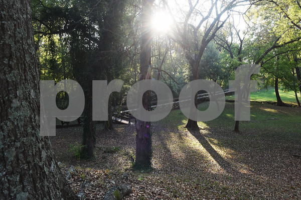 The 546-foot footbridge at Footbridge Garden Park is pictured in Rusk Monday Nov. 14, 2016.  (Sarah A. Miller/Tyler Morning Telegraph)