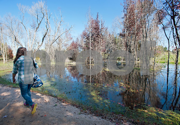 Mineola Nature Preserve