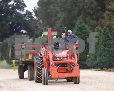 Robert Cockrell drives customers Ingrid Gesiler and Martin Kruk back with the tree they selected at Trail Creek Farm in Lindale Tuesday Nov. 22, 2016. Trail Creek Farm is a Christmas tree farm that also offers family activities such as a zip line, picnic areas and bounce houses.  (Sarah A. Miller/Tyler Morning Telegraph)