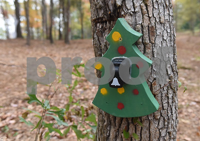 The treasure hunt at Trail Creek Farm Lindale is pictured Tuesday Nov. 22, 2016. Trail Creek Farm is a Christmas tree farm that also offers family activities such as a zip line, picnic areas and bounce houses.  (Sarah A. Miller/Tyler Morning Telegraph)
