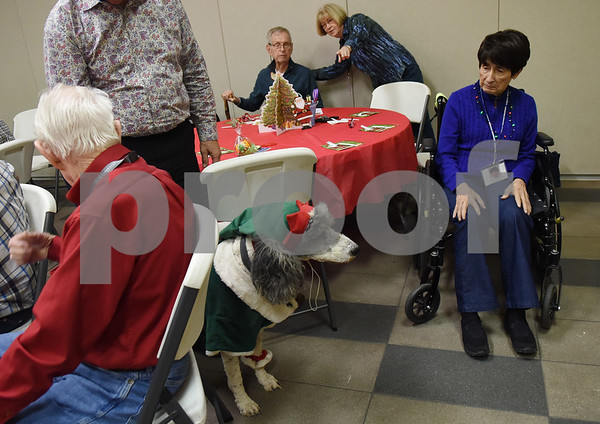 Toni Rivera is visited by a poodle dressed as Santa;s helper during the Alzheimer's Alliance's Wonderful Wednesdays program Wednesday Dec. 14, 2016. Wonderful Wednesdays is a day club program that provides cognitive and social stimulation for individuals in the early or mid-stages of Alzheimer's disease and related dementias. It also serves as a break time for families and caregivers.   (Sarah A. Miller/Tyler Morning Telegraph)
