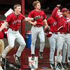 Globe/T. Rob Brown<br /> Joplin High School's dugout rejoices as Matt Burgess' 2 RBI double turns what might have been a loss into a win against Glendale during the last at-bat of the game Friday afternoon, May 5, 2006, at Joplin.