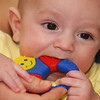 Globe/T. Rob Brown<br /> Brandt Strup, 4 months old, chews on a teething toy Monday afternoon, March 13, 2006, in his Galena, Kan., home with the aid of his mother Angie Strup.<br /> Section: H&F