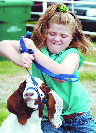 Globe/T. Rob Brown<br /> Micah O'Malley, 9, of Jasper, attempts to get her boer goat, Piña Colada, to cooperate as she practices for judging Wednesday afternoon, July 7, 2010, at the Jasper County Fairgrounds in Carthage.