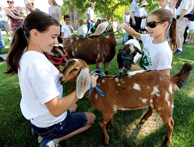 Holly Harroun, left, and Molly Johnson, both 12, are part of the 4-H Goats and Galore club that marched in the Boulder County Fair Parade on Saturday. For more photos and a video of the parade, go to www.dailycamera.com. Cliff Grassmick / July 28, 2011