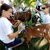 "Holly Harroun, left, and Molly Johnson, both 12, are part of the 4-H Goats and Galore club that marched in the Boulder County Fair Parade on Saturday.<br /> For more photos and a video of the parade, go to  <a href=""http://www.dailycamera.com"">http://www.dailycamera.com</a>.<br /> Cliff Grassmick / July 28, 2011"