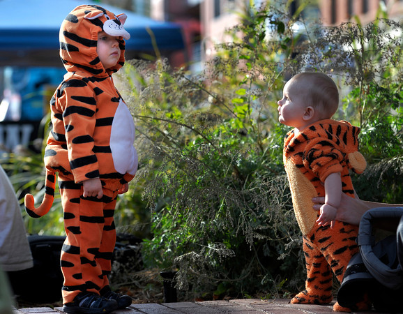 Jayden Beyer (left), 23 months, and Cooper Zachritz (right), 6 months, check out each others tiger costumes during the Munchkin Masquerade on the Pearl Street Mall in Boulder, Colorado October 31, 2011.  CAMERA/Mark Leffingwell