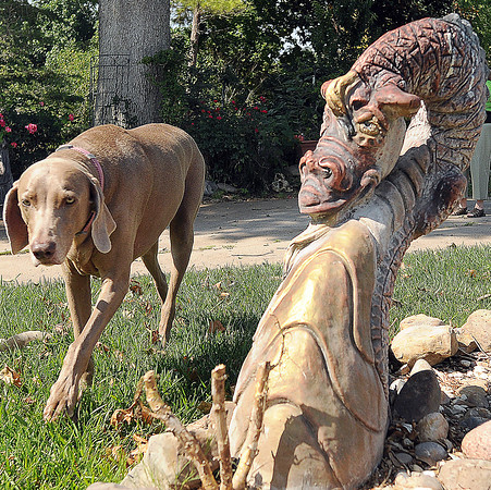 Missy poses with her dragon buddy in the front yard of the Smith zoo on south Pickard Ave.  Jerry Laizure / The Transcript