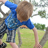 Memphis Cook, 6, jumps from a tree as he play at Andrews Park Friday afternoon.<br /> Kyle Phillips/The Transcript