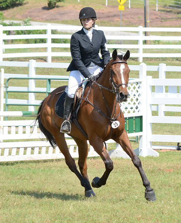 Ashton Willnow and her horse Zydecko take a turn after jumping an obsticle Saturday at the competitive horse show at Feather Creek Farms.<br /> Kyle Phillips/The Transcript