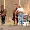Residents lead two horses away from a wildfire burning through a neighborhood east of 190th Ave SE and Banner Road.