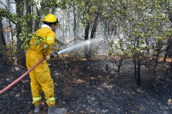 A Norman firefighter sprays down hot spots in a field along 108th Ave. NE after a grass fire broke out in the area Wednesday afternoon.<br /> Kyle Phillips/The Transcript